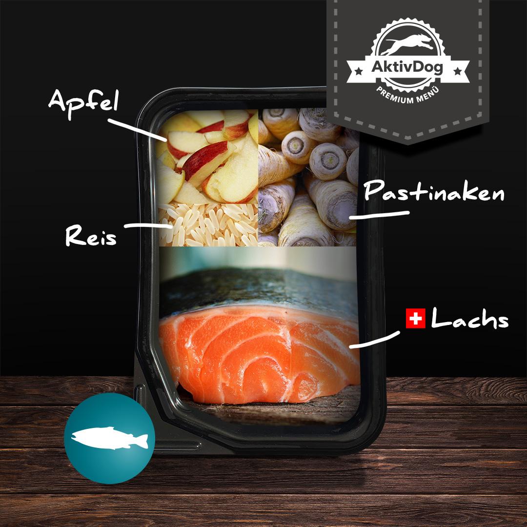 Was ist eigentlich im AktivDog Lachs mit Pastinaken drin? Viele leckere Zutaten ohne Zusatzstoffe!